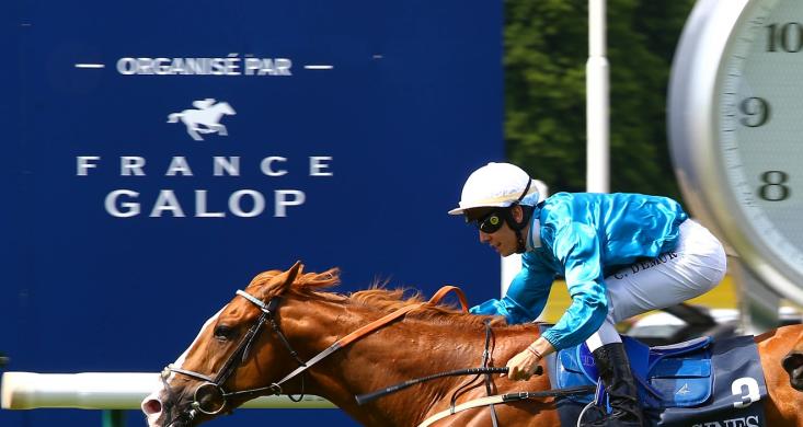 France Galop Calendrier 2020.France Galop Fait Le Bilan Du Premier Trimestre Equidia